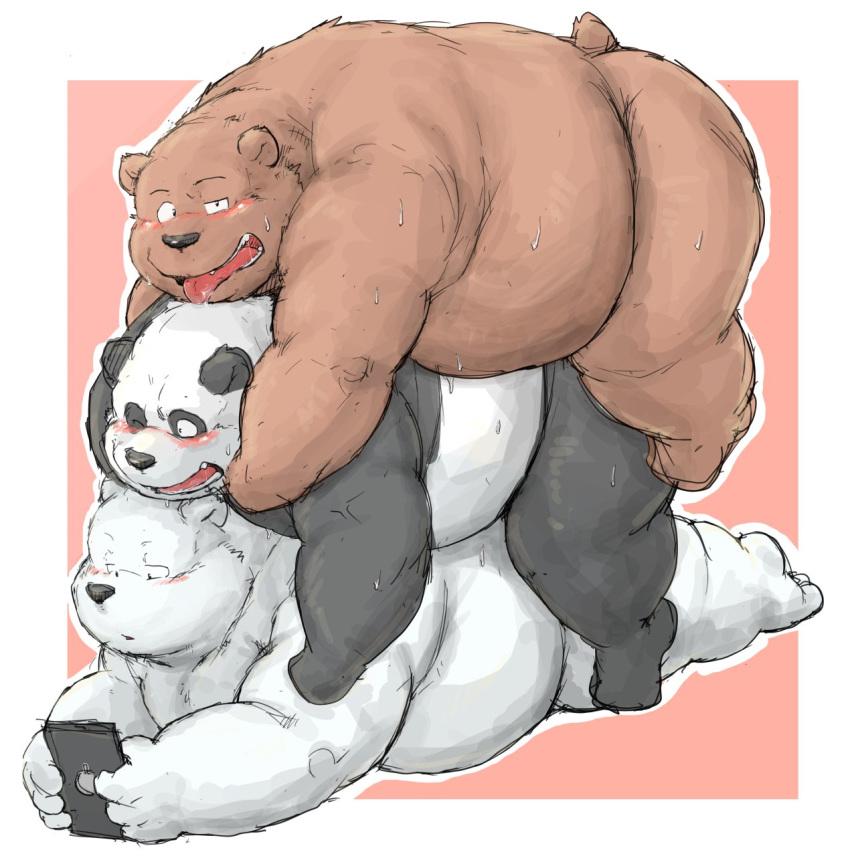 bear bears we To love ru darkness riko