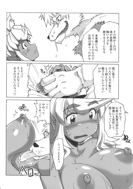 pokaan renkin magical san-kyuu Ane jiru 2 the animation: shirakawa sanshimai ni omakase